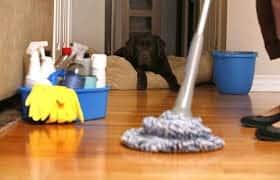 pulizie appartamenti milano